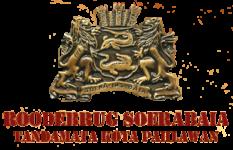 logo bening